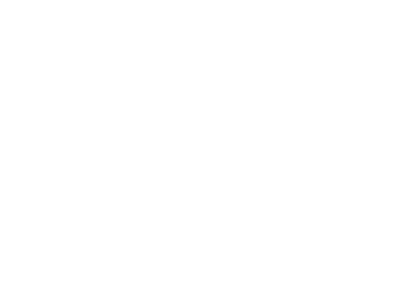 Écran Village